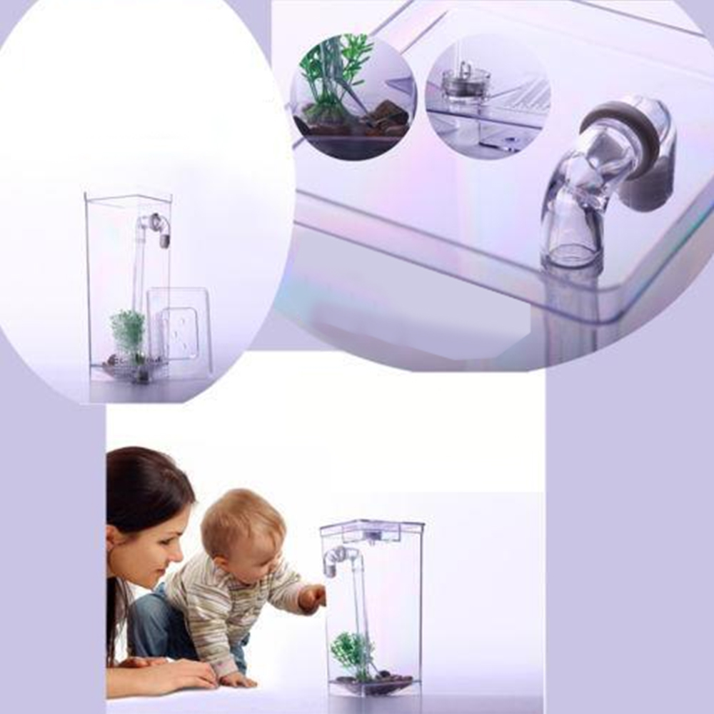 New fish self cleaning tank complete aquarium setup holder for Fresh water tank cleaning fish