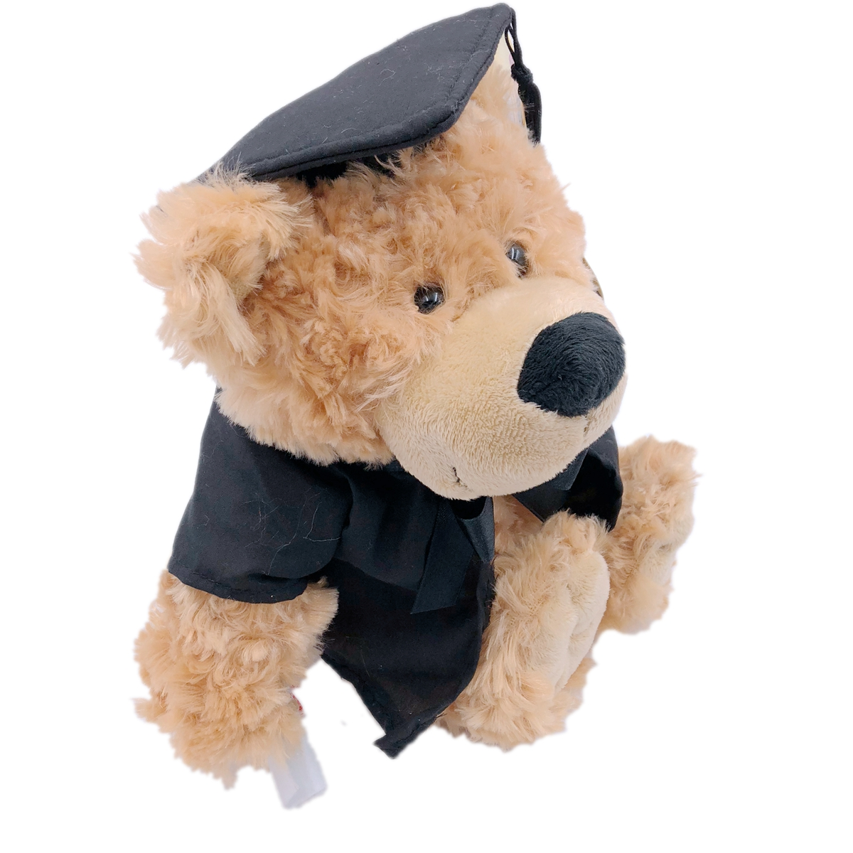 Graduation Teddy Bear Gift With Diploma In Hand Black Gown