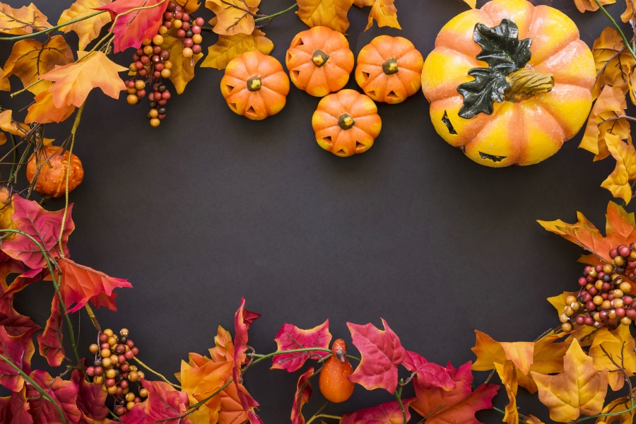 Details About Halloween Autumn Fall Harvest Pumpkin Props Backdrop 5x3ft Background Photos