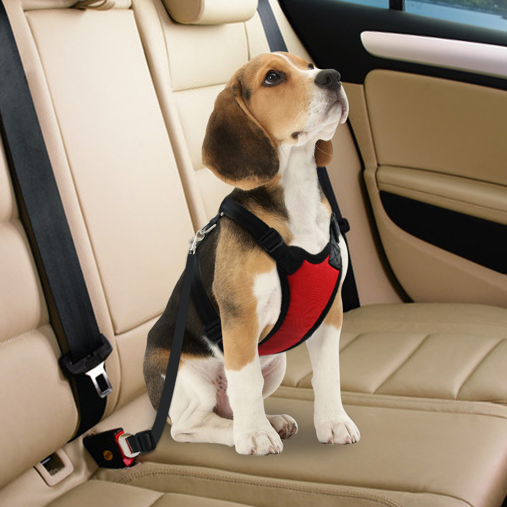Dog Car Harness >> Details About Dog Car Harness Safety Seatbelt Air Mesh Clip Restraint Leash For Dog Travel S L