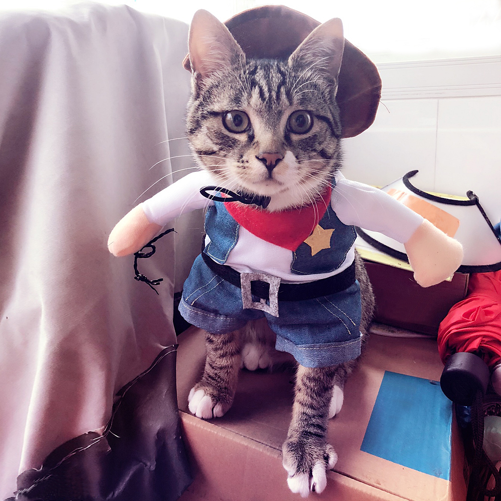 Details about Funny Dog Cat Costume Clothes Apparel Cowboy Suit Kitty  Halloween Cosplay Coat