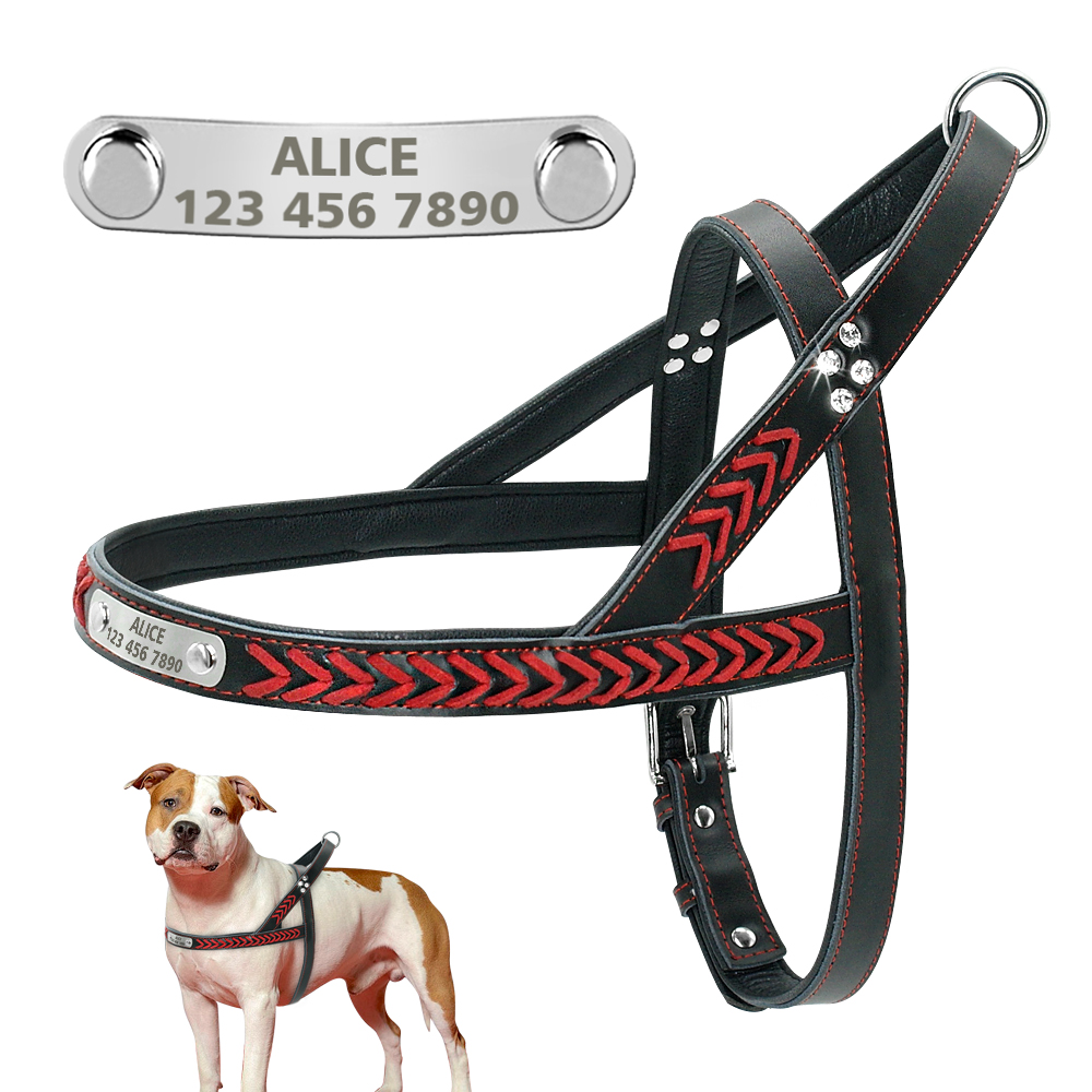personalized leather dog harness with engraved dog name plate medium