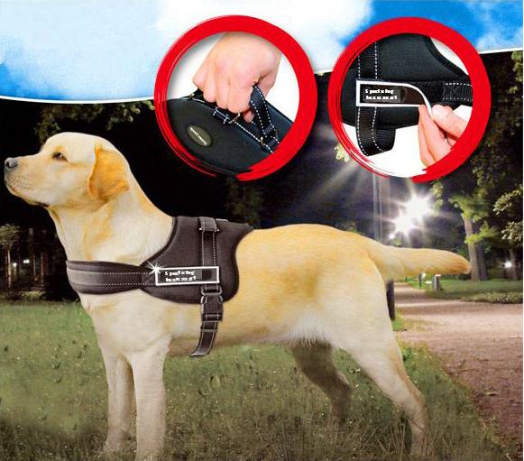 Sports Training Dog Harness Heavy Duty Pitbull Mastif K9
