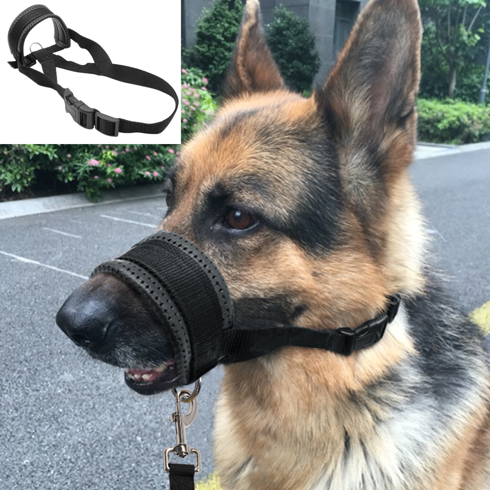 Collar To Stop Dog Pulling