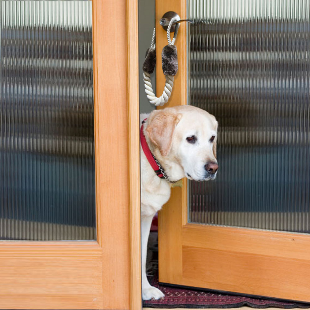Image result for train dog close door