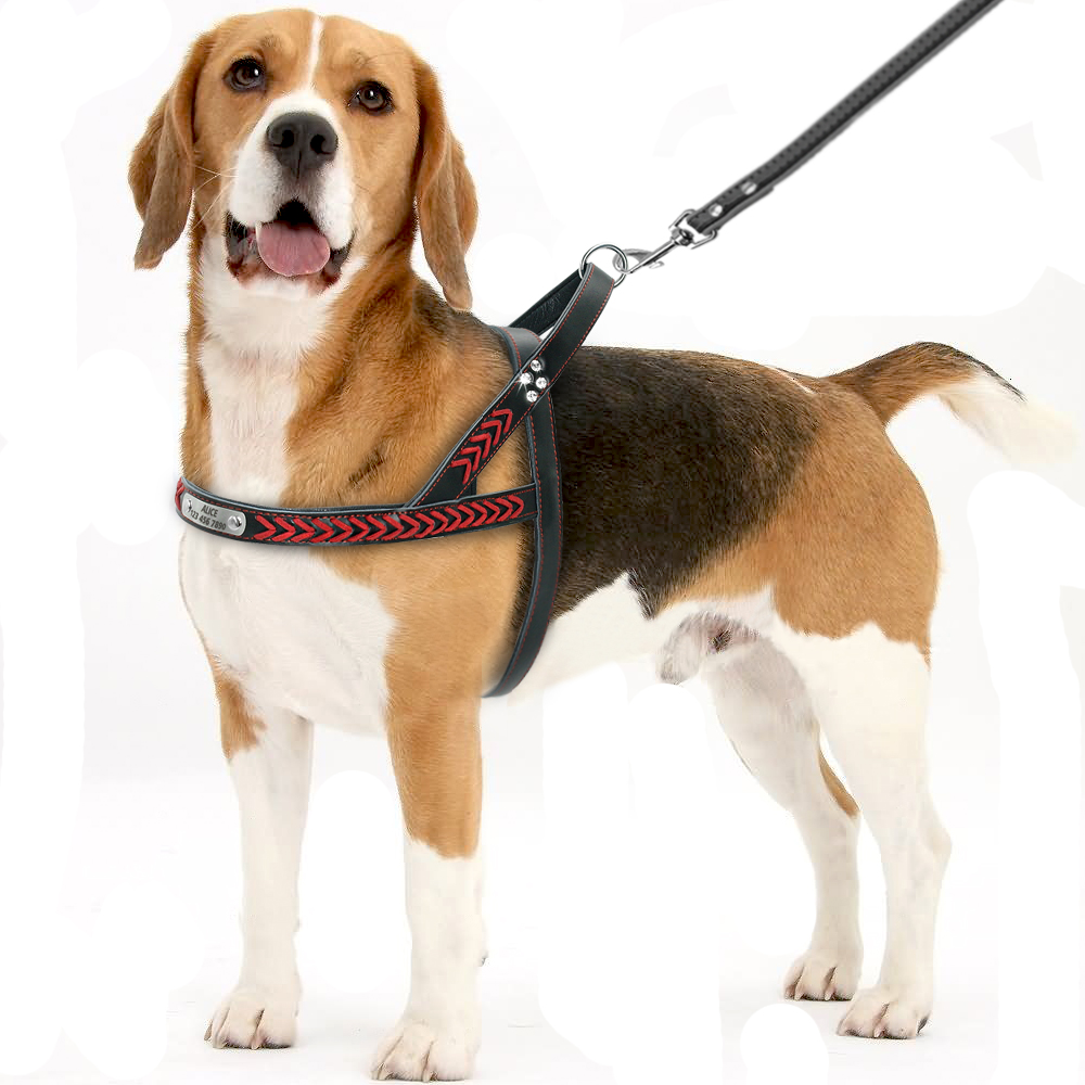No Pull Personalized Dog Harness Custom Leather Dog Pet Id
