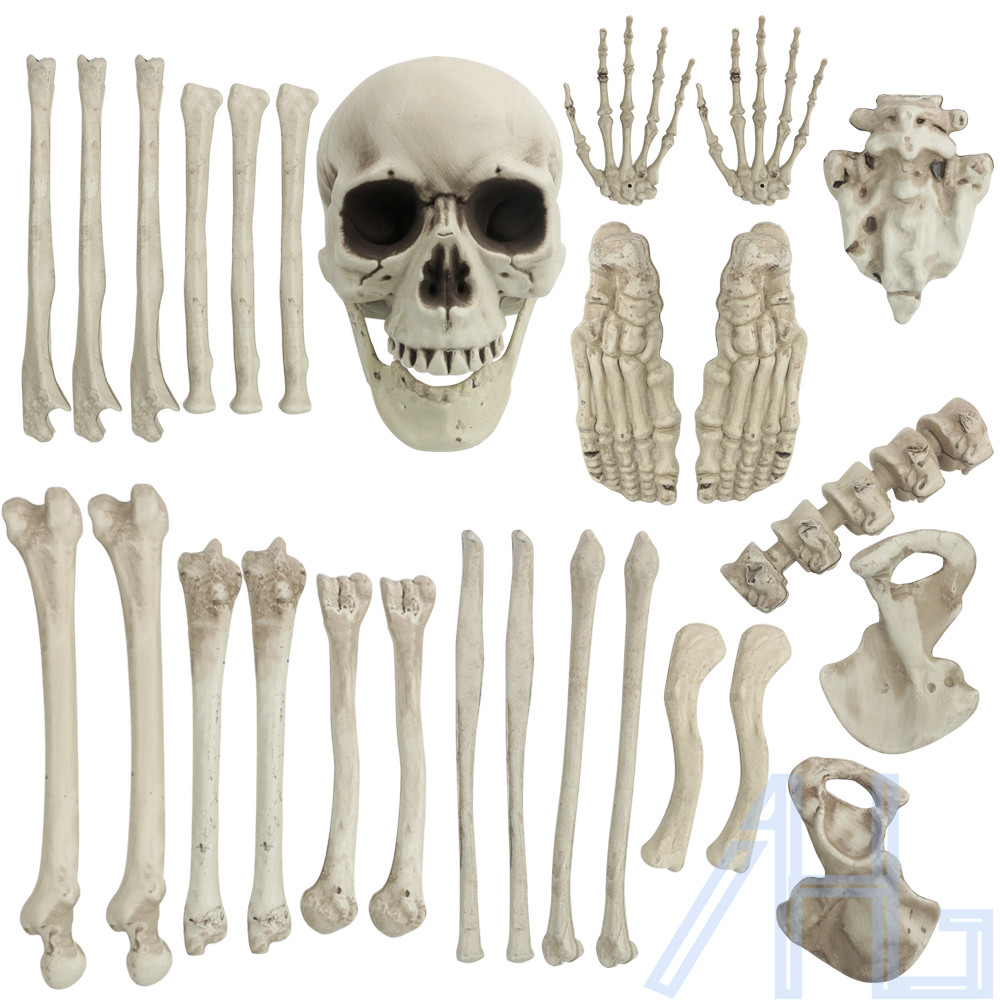 28pcs halloween bag of skeleton bones table decoration for Bag of bones halloween decoration