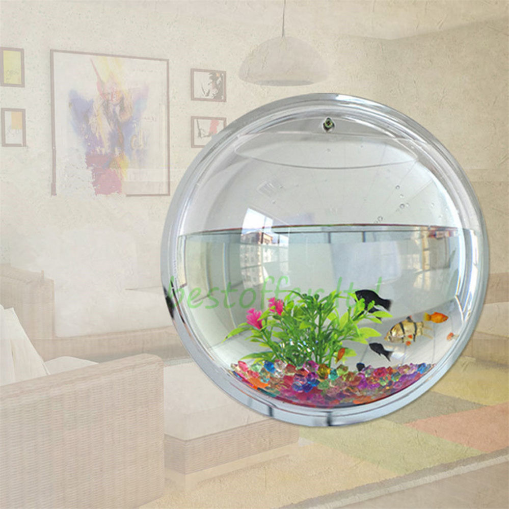 Large wall mount bubble bowl fish tank aquarium beta for Acrylic fish bowl