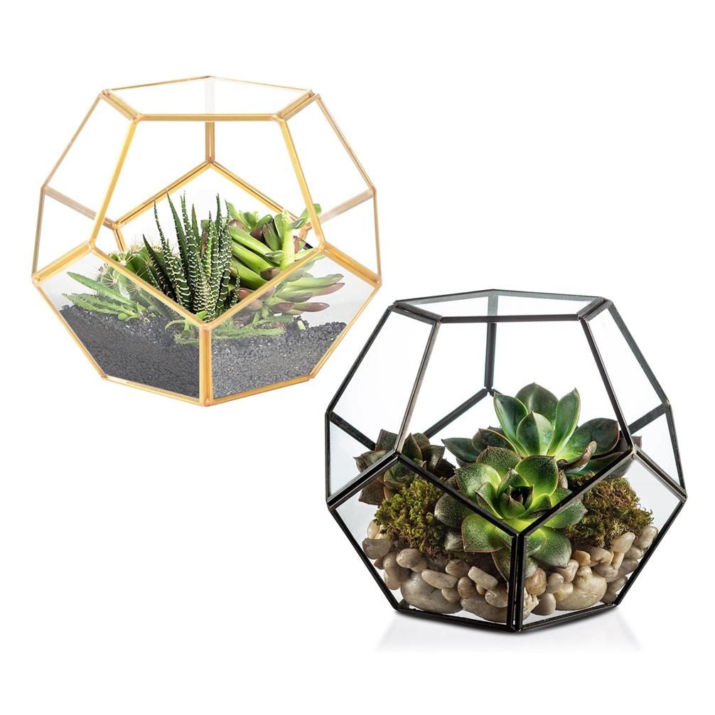 Flower Tabletop Vase Glass Planter Plant Terrarium Container Home