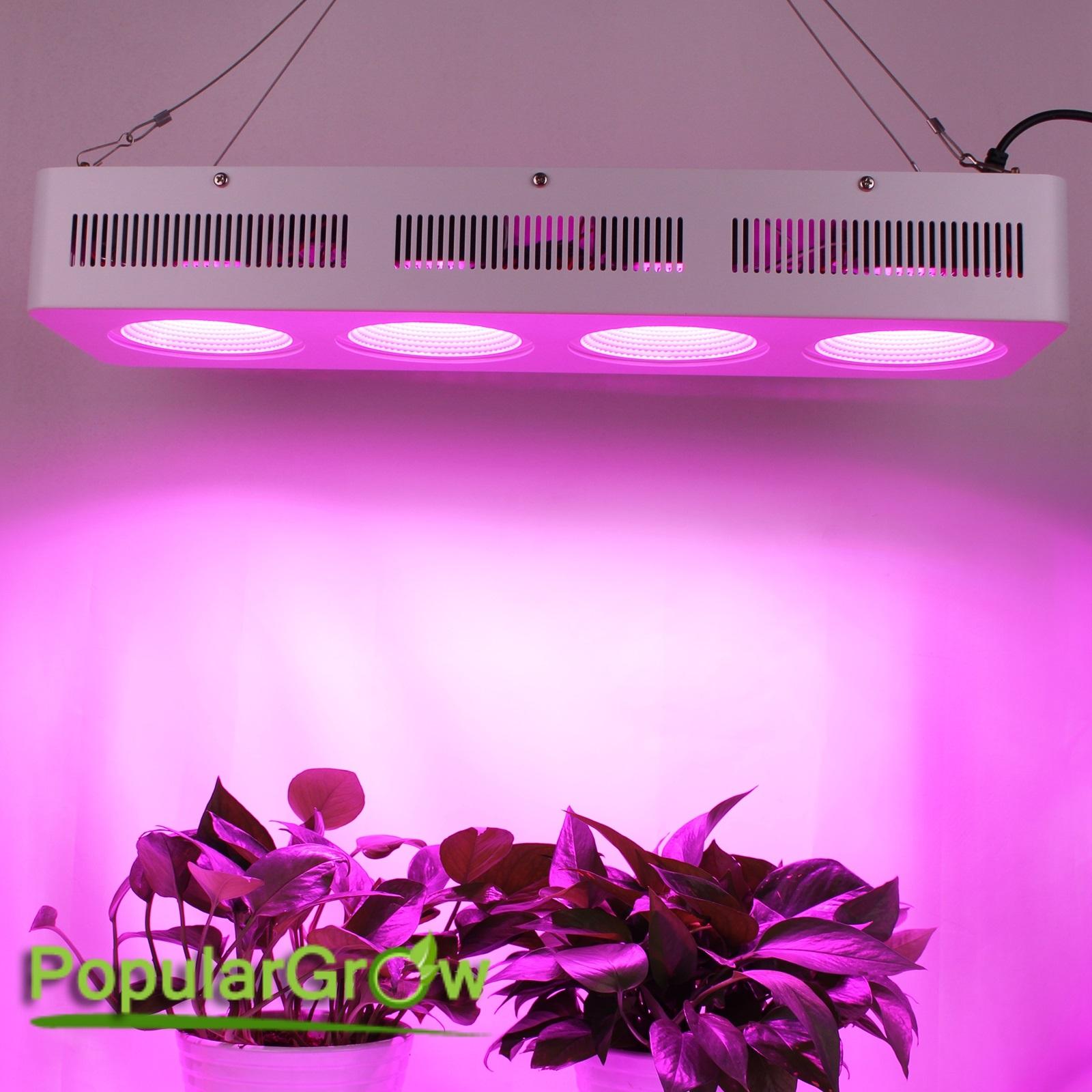 Full-Spectrum-COB-Reflector-800W-LED-Grow-Light-panel-Hydro-Plants-Veg-Flowers
