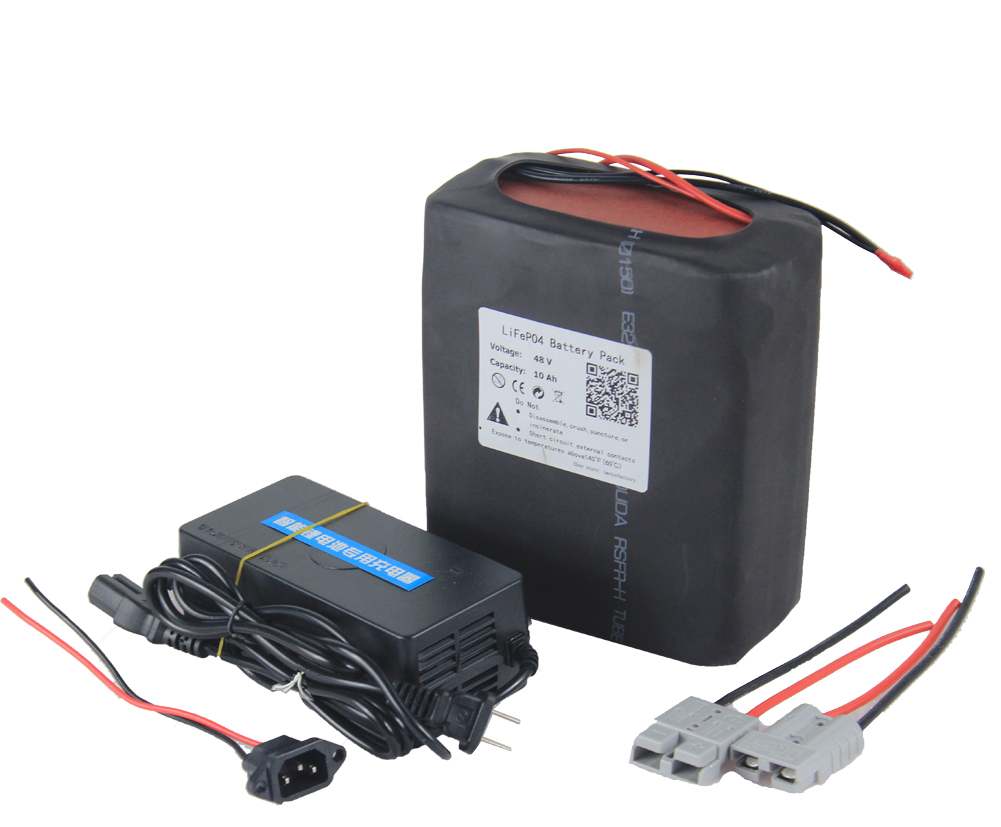 BMS 48V 10AH Lithium Battery Pack 3A Charger Rechargeable 500W Electric Bike