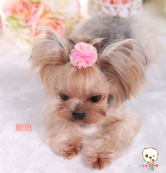 Tulle Small Pet Dog Yorkie Hair Bows Accessories Shih Tzu Hair Clips