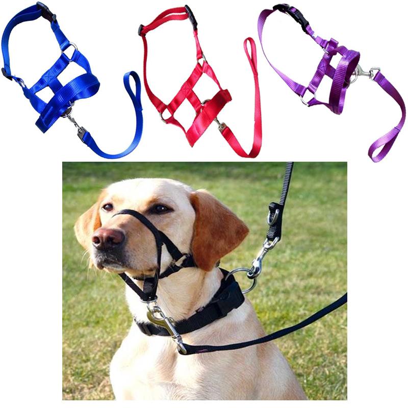 muzzle dog training harness leash head collar gentle leader pet stops pulling