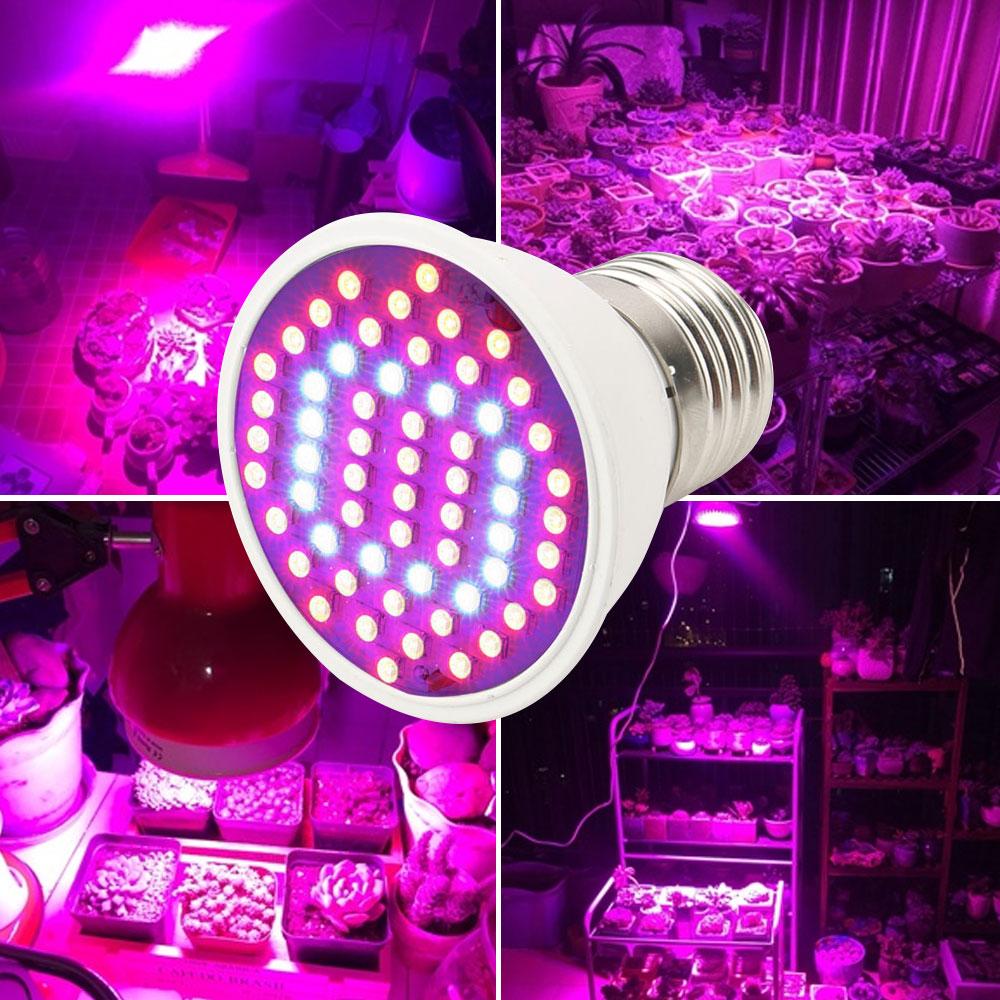 6W E27 LED wachsen helle Pflanzen-hydroponische Lampen-Birne AC85 ...