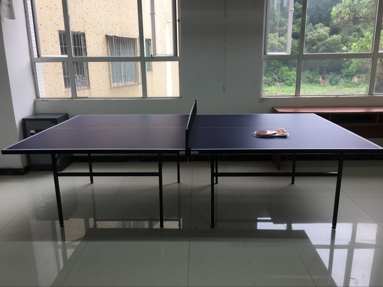 Panana Professional Indoor Sport Game Table Tennis Ping Pong Table Full Size