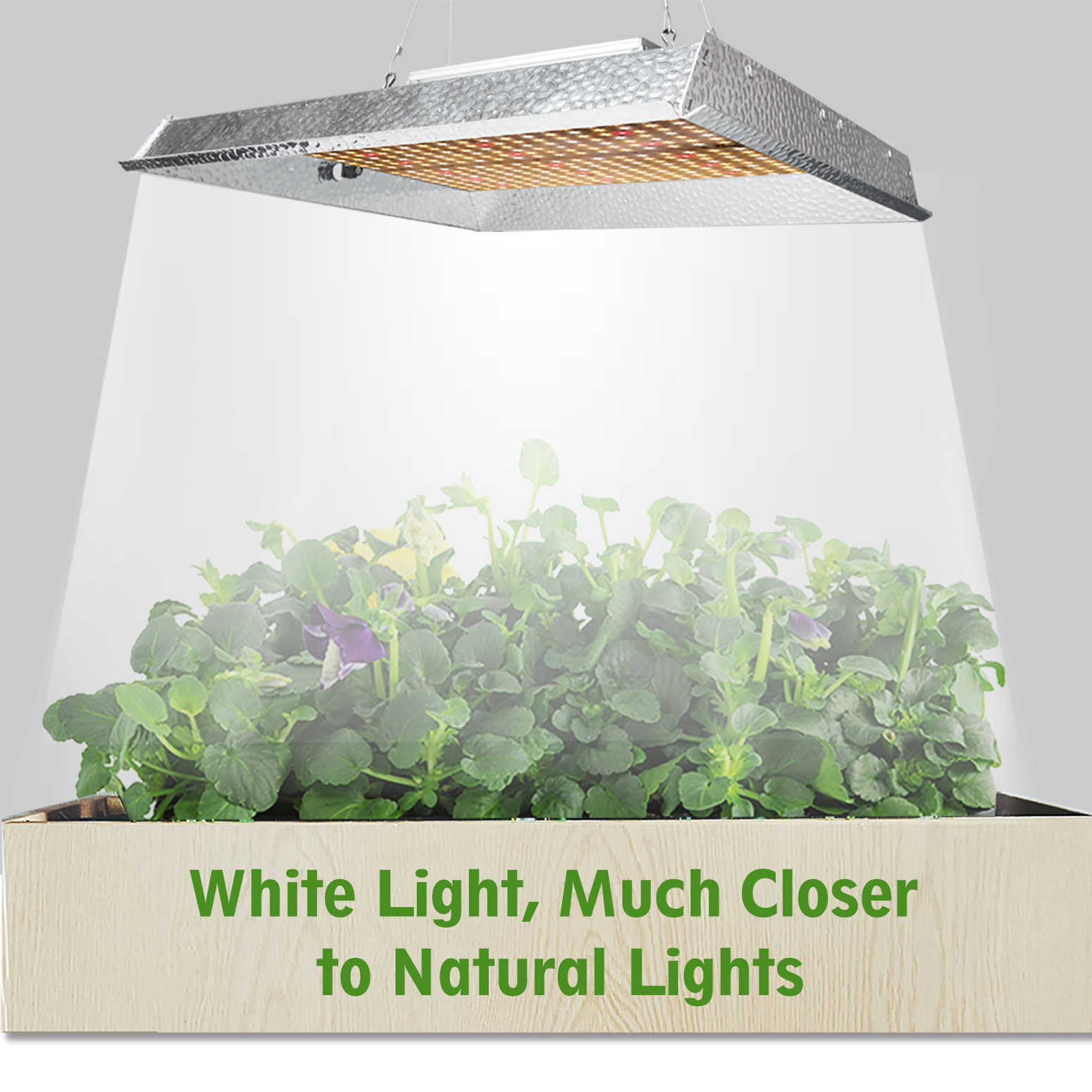 Mars Hydro Ts 1000w Led Grow Lights Full Spectrum Veg