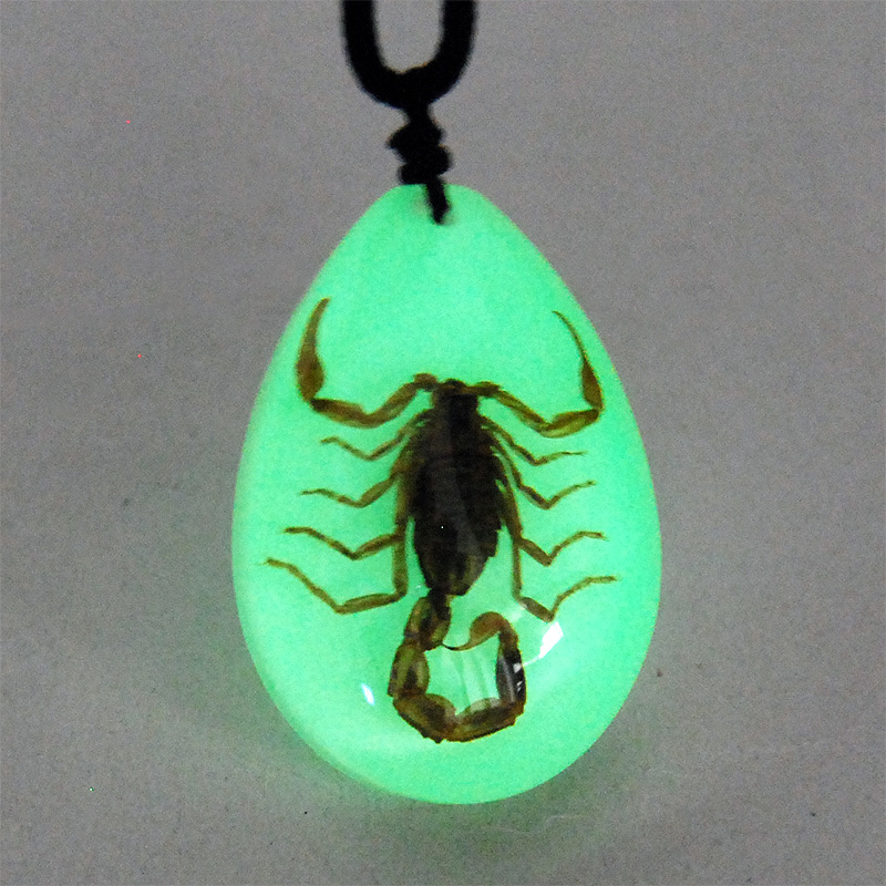 BLACK SCORPION GLOW INSECT NECKLACE PENDANT TAXIDERMY
