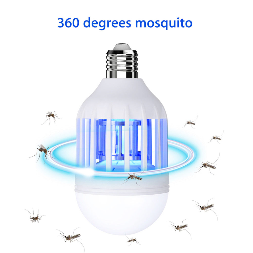 White Light Bug Due — Paulinelibutti