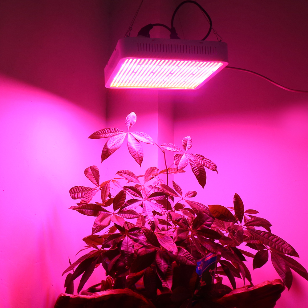 800w led grow lampe vollspektrum led wachstumslampe pflanzenlicht 800w led grow lampe vollspektrum led wachstumslampe pflanzenlicht pflanzenlampe parisarafo Gallery