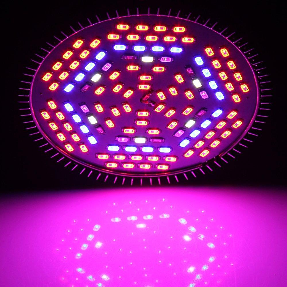 e27 80w led pflanzenlampe wachstumslampe pflanzenleuchte pflanzen grow lampe de ebay. Black Bedroom Furniture Sets. Home Design Ideas
