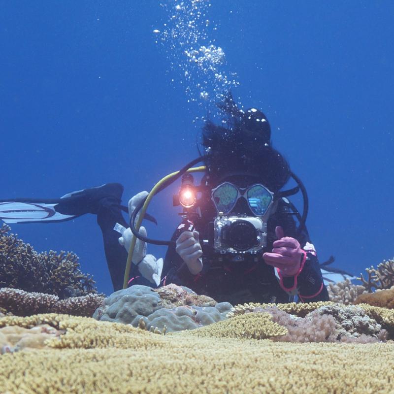 """1/"""" Doppel Kameraschiene Unterwassergehäuse Doppelgriff mit Kugel 2,5 cm 202.11"""