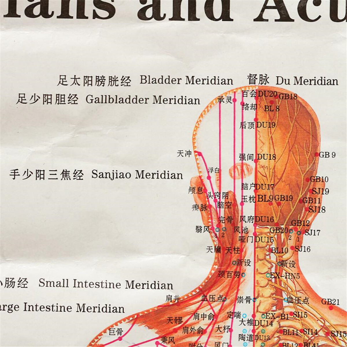 Chinese Medicine Body Acupuncture Points Meridians And ...