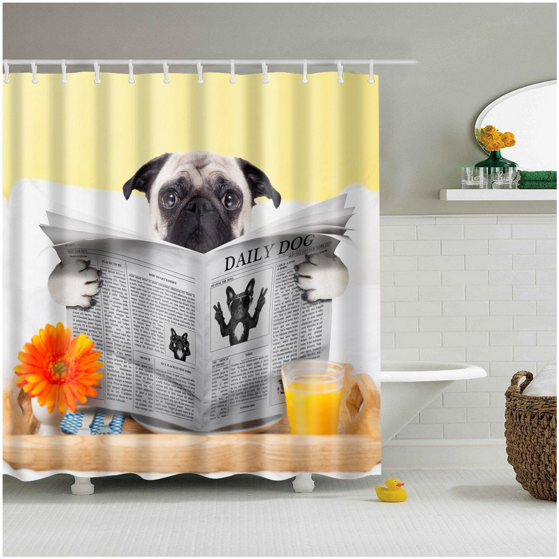 Details About Shower Curtain Art Decor Set