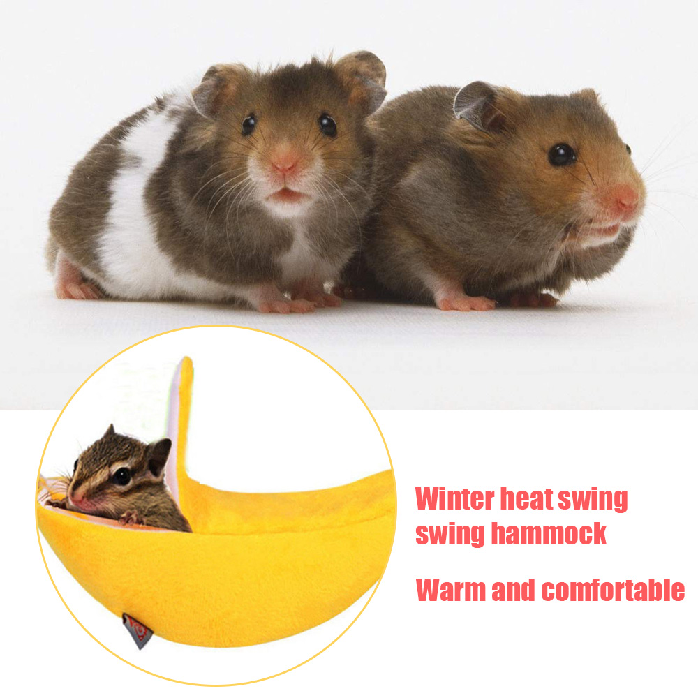 Hammock House for Pet Ferret Rat Hamster Parrot Squirrel Hanging Bed Toy Divine